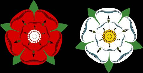 The Roses match is the most intense and historic of all County Championship battles, but try telling that to Sky